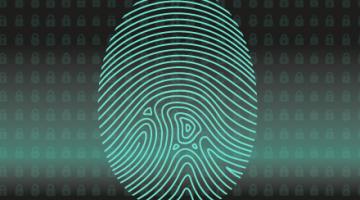 Animez un atelier autour de l'identité numérique