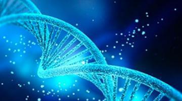 AP® Biology - Part 3: Evolution & Diversity