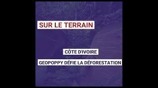 Côte d'Ivoire : GeoPoppy défie la déforestation