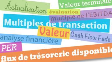 Evaluation financière de l'entreprise