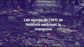 Les agents de l'AFD de Nouméa nettoient la mangrove