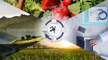 La métabolomique : enjeux technologiques et scientifiques