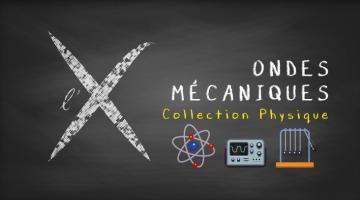 Collection Physique : 3- Ondes mécaniques