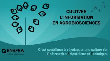 Cultivons l'information