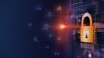 Cybersecurity and Privacy in the IoT
