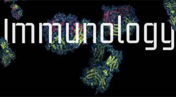 免疫学基础——第Ⅱ部分