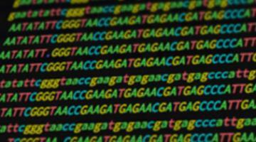 案例研究:RNA序列数集分析
