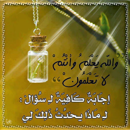Bouchra Edarai